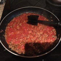 Browned meat, salsa & spices