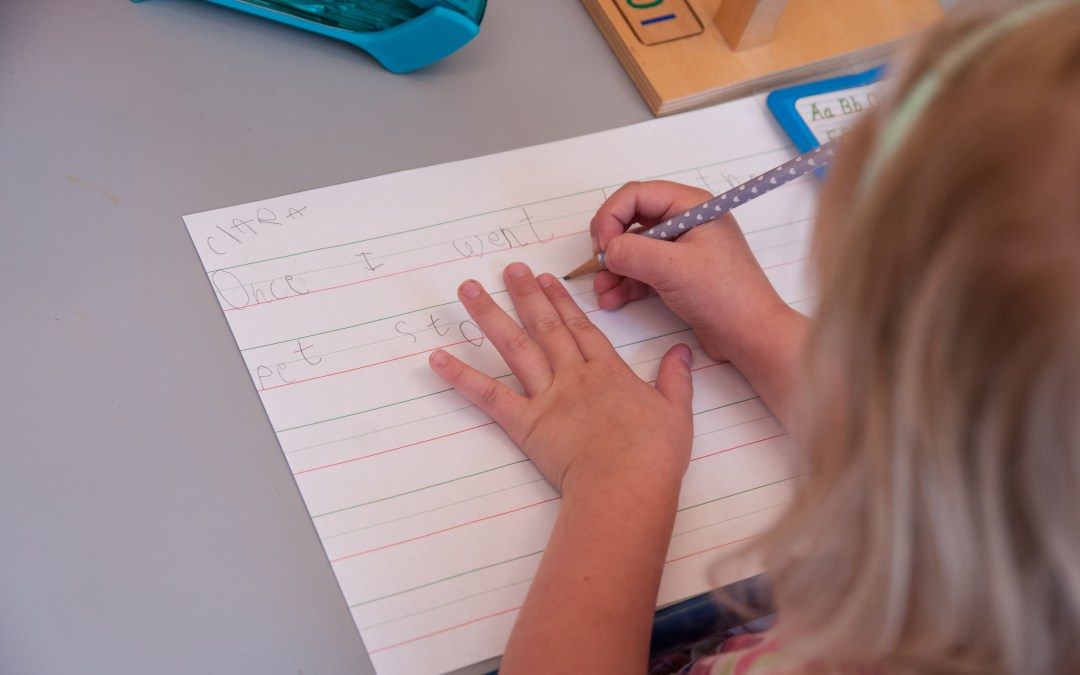 Blog Post: How do Montessori Schools Teach Reading? (Part 2)