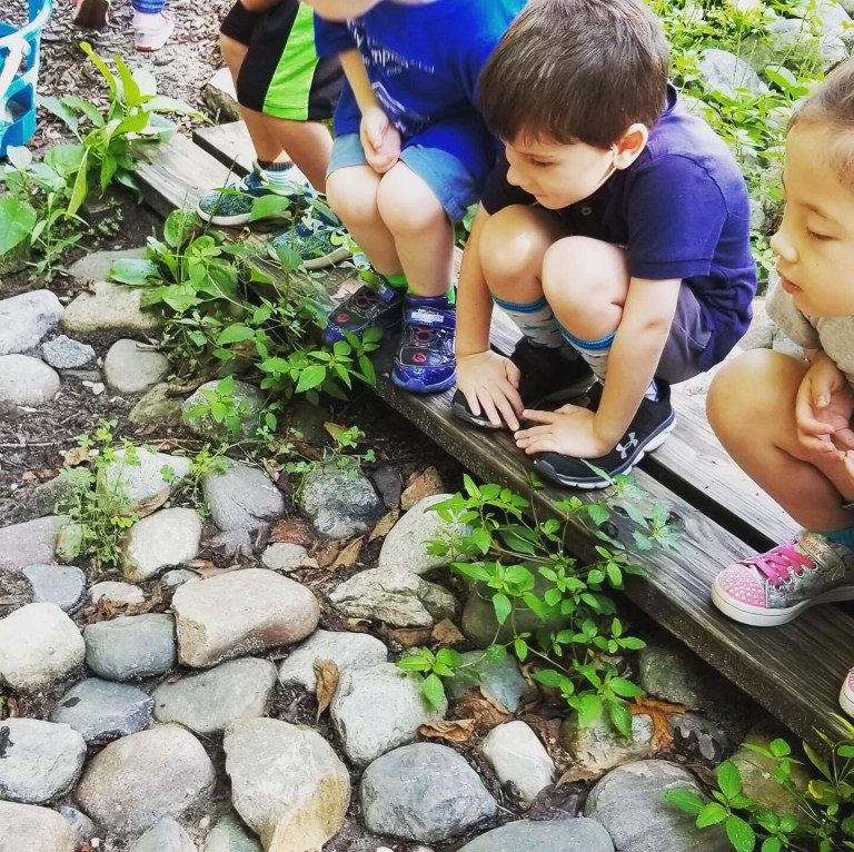 Children watching a small frog demonstrates character development in early childhood classrooms.