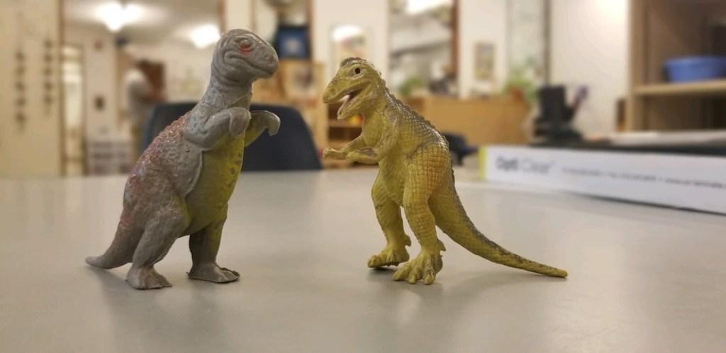Dinosaur Summer Camp Adventures!