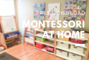 Text over Image of a Montessori at Home room