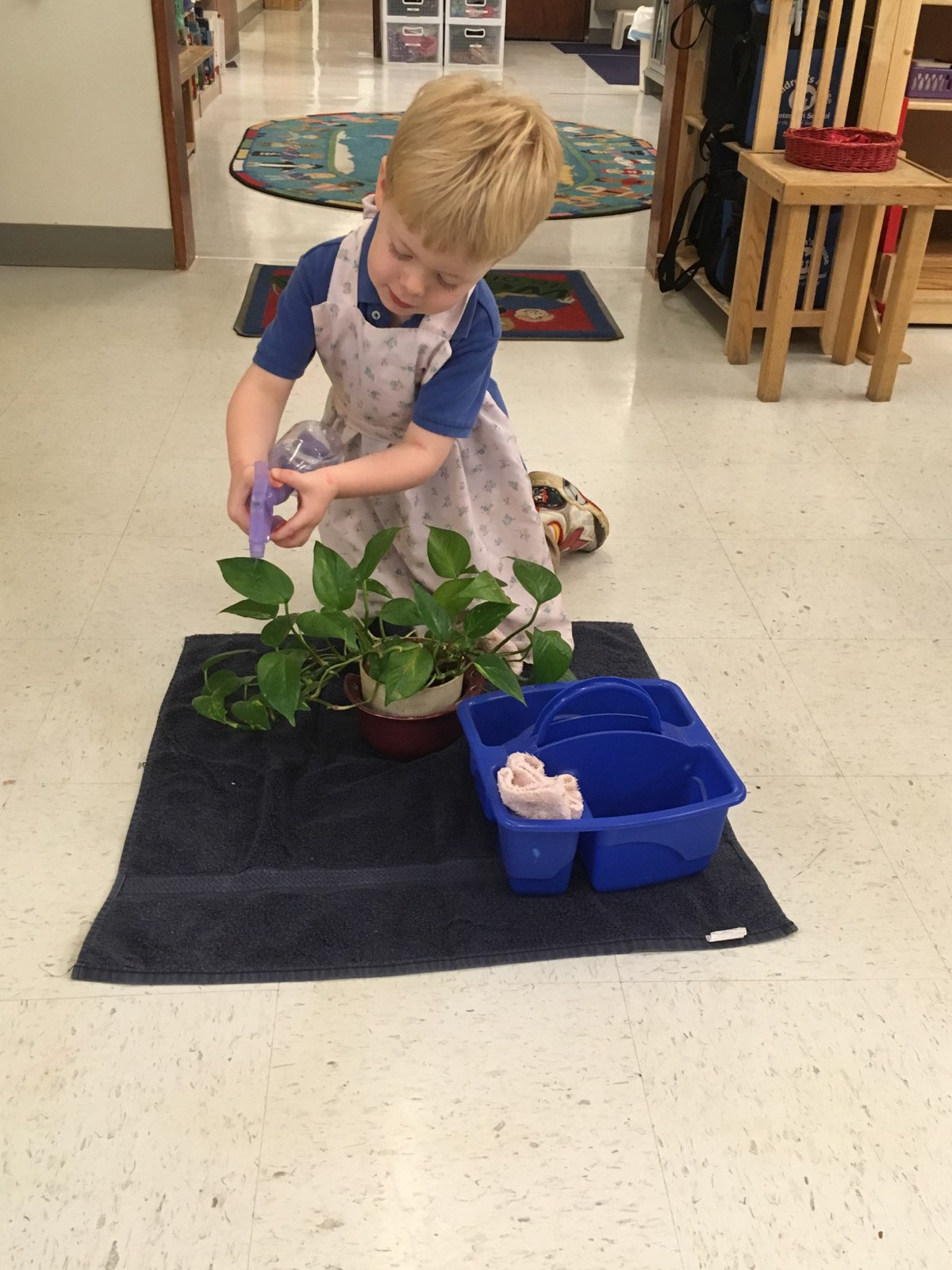 Child clean plant leaves