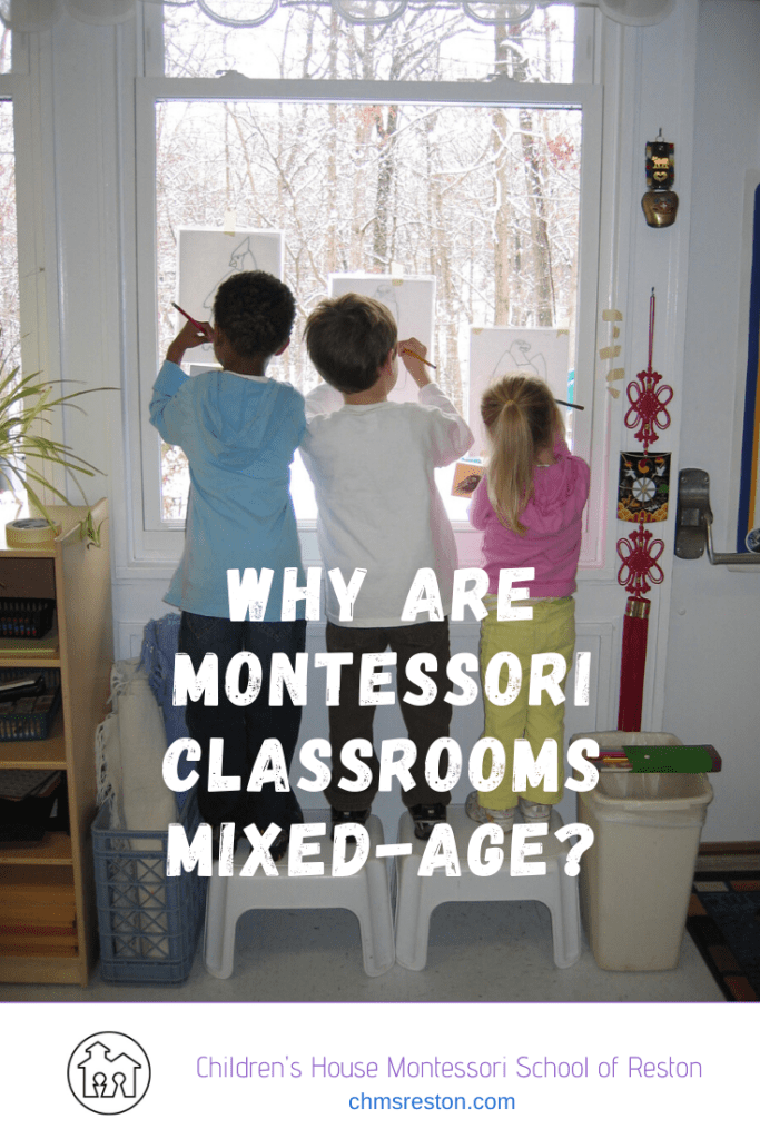 "Blog Title Card ""why are Montessori classrooms mixed age?"""