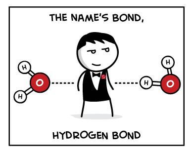 Hydrogen Bond Joke