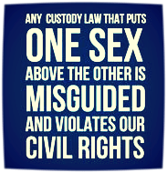 Stop Family Court Civil Rights Violations - AFLA Blog2016