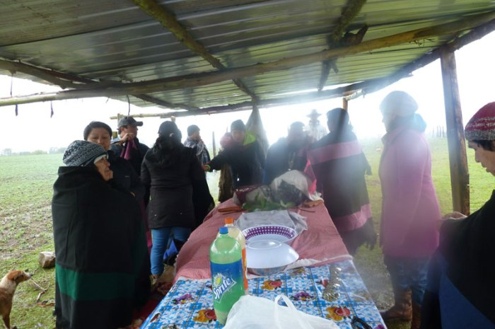 Wetripantu en la Comunidad Domingo Tori