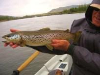 bad-weather-big-fish-1449689165