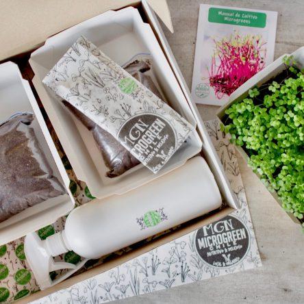 Kit Microgreen