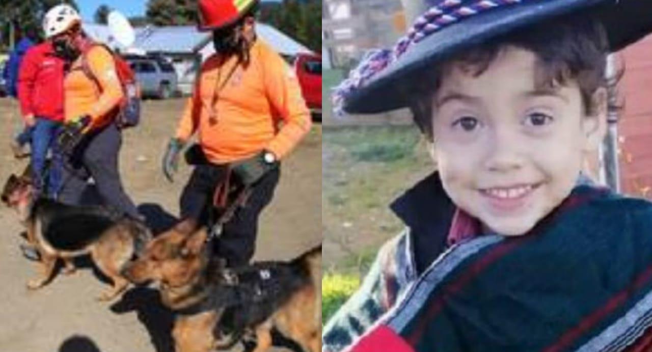 Rastreo de perros CONFIRMA relato del tío, rastro SE PIERDE en lugar donde DESAPARECIÓ