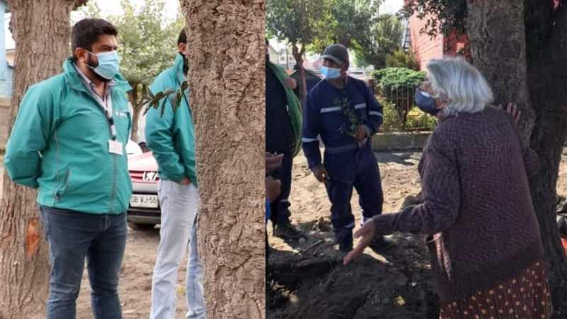 Alcalde de Talcahuano indicó que SACARÁN arbol defendido por abuelita en Higueras