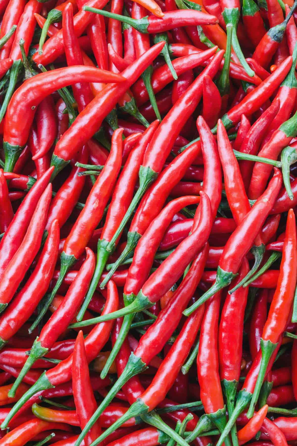 Cayenne Peppers – All About Them