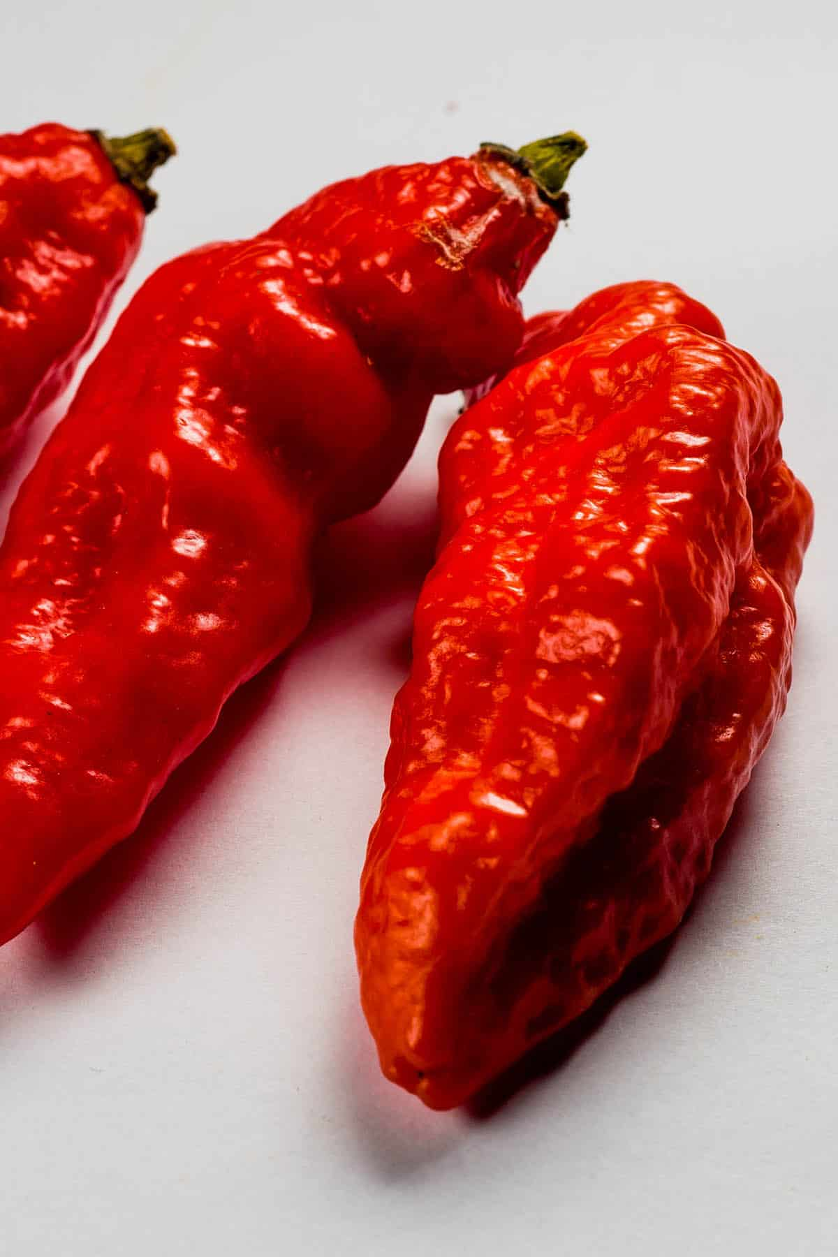 Spanish Naga Peppers