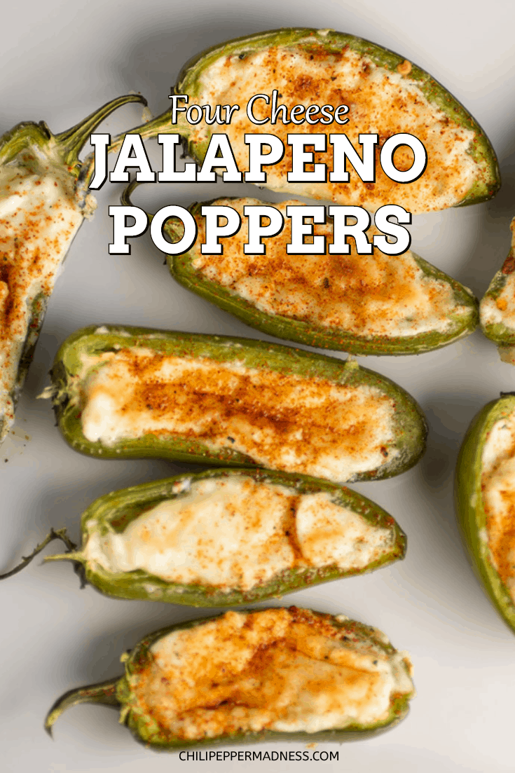 Four Cheese Jalapeno Poppers Recipe Chili Pepper Madness