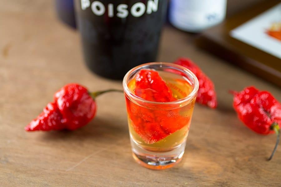 Scorpion Tongue Vodka Shot in a shot glass, very hot!
