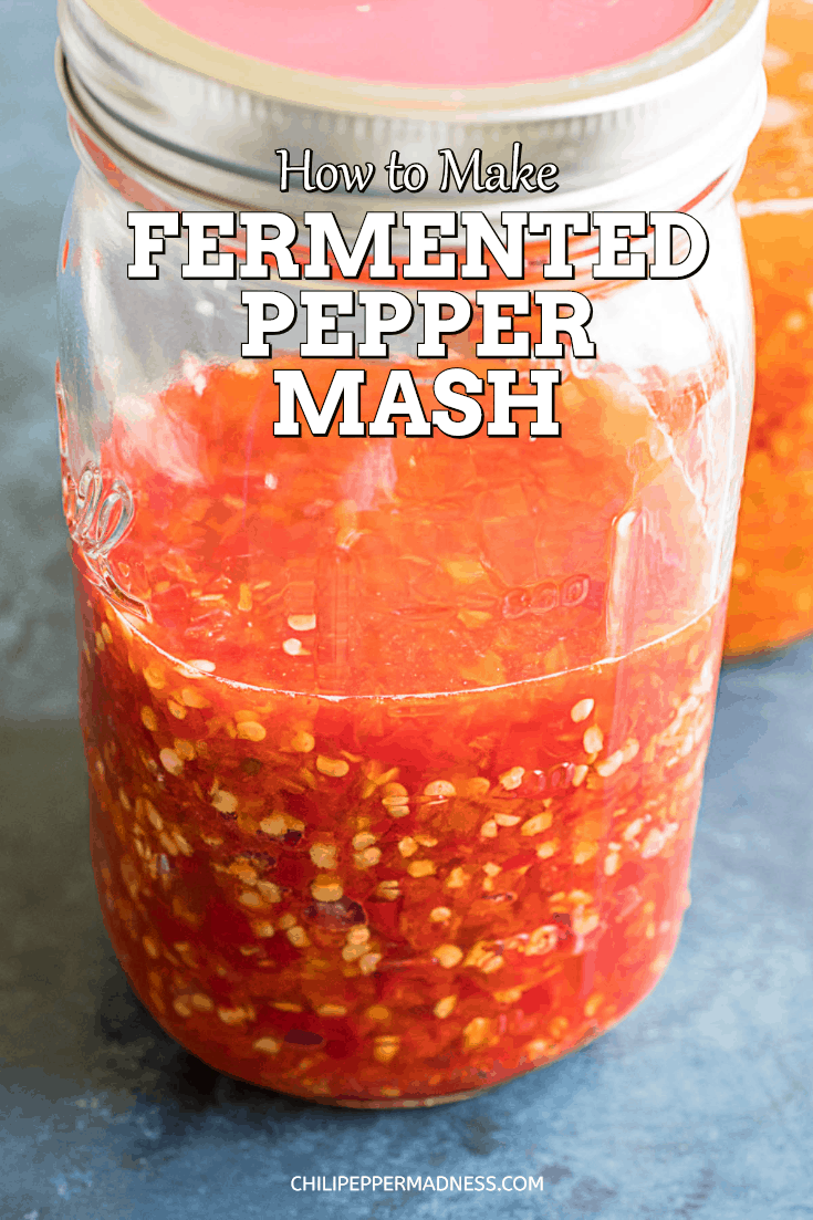 How to Make Fermented Pepper Mash