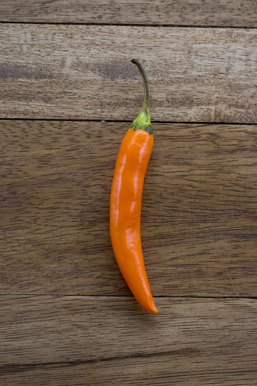 Orange Thai Chili Pepper: All About Them