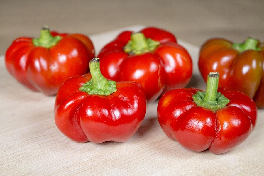 Liebesapfel Sweet Chili Pepper