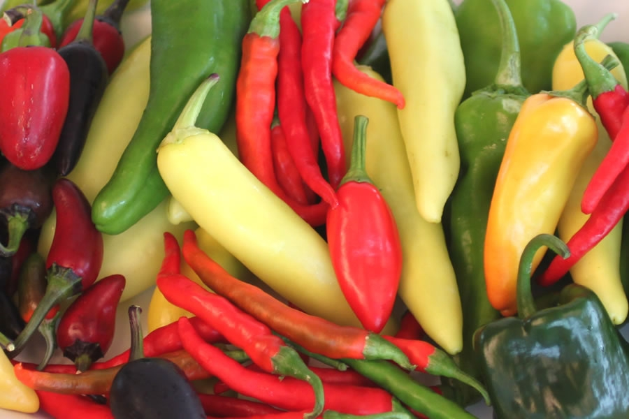 How Do You Measure Chili Pepper Heat?