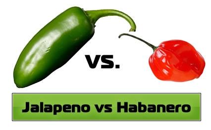 The Jalapeno Pepper vs. the Habanero Pepper