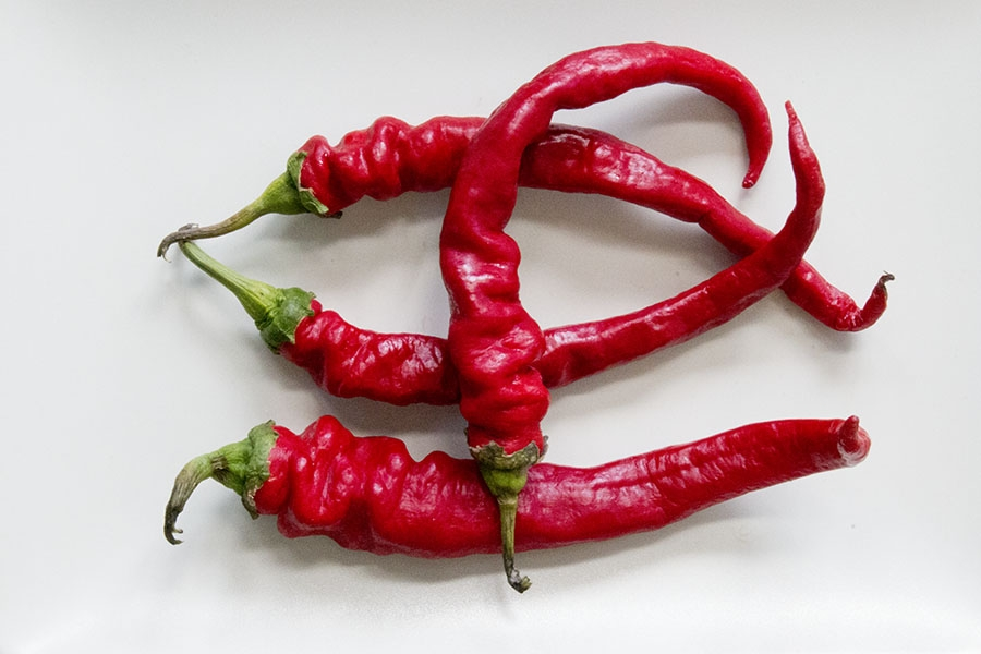 Doux des Landes Chili Pepper