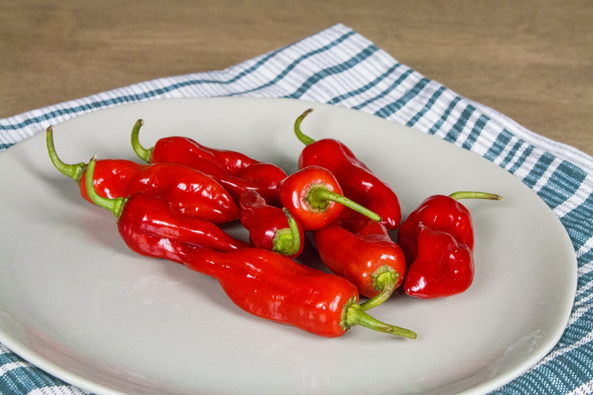 Piment de Bresse Pepper
