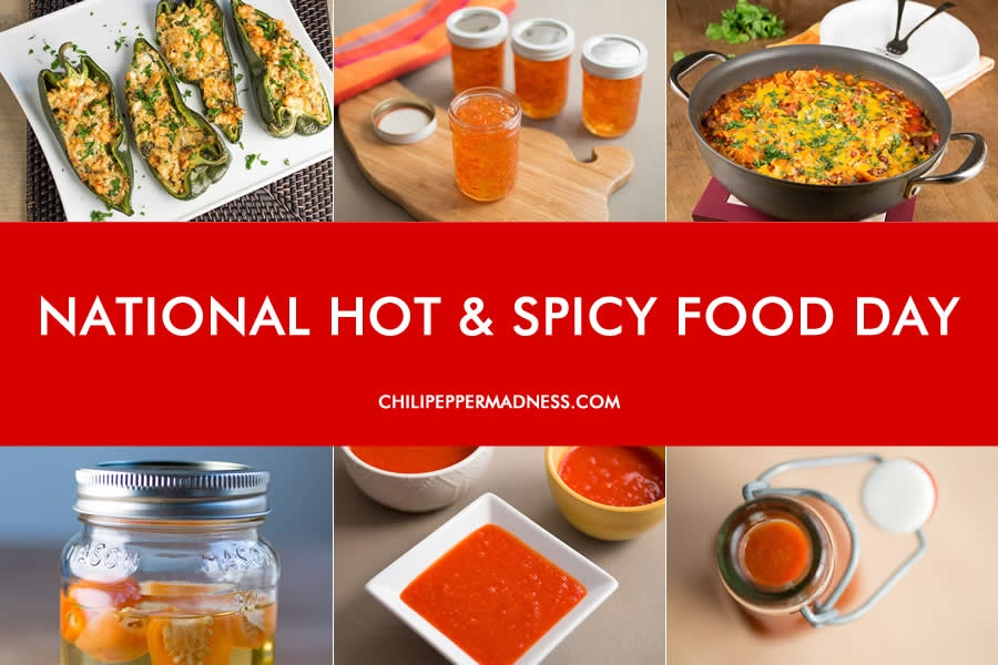 Top Ten Spicy Summer Recipes for National Hot and Spicy Food Day