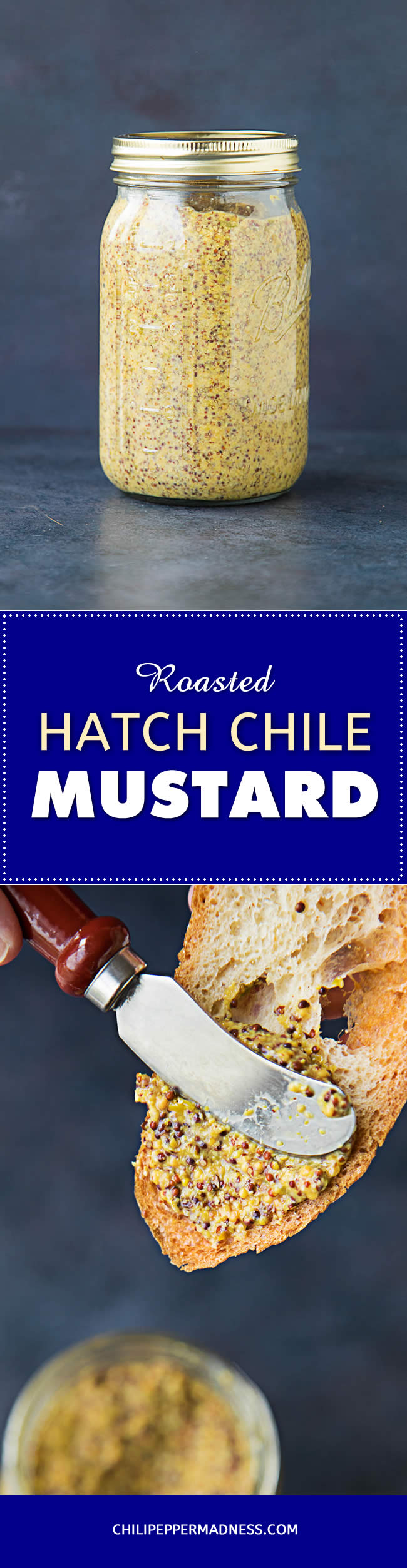 Roasted Hatch Chile-Beer Mustard - Recipe