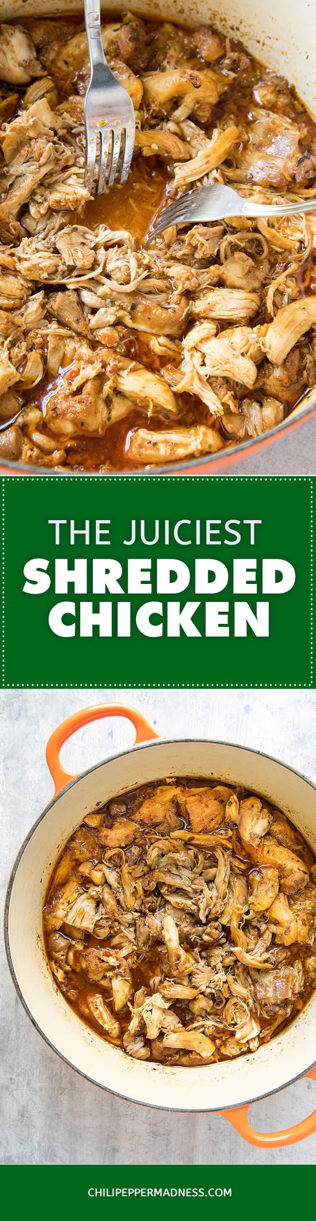 The Juiciest Shredded Chicken - Recipe