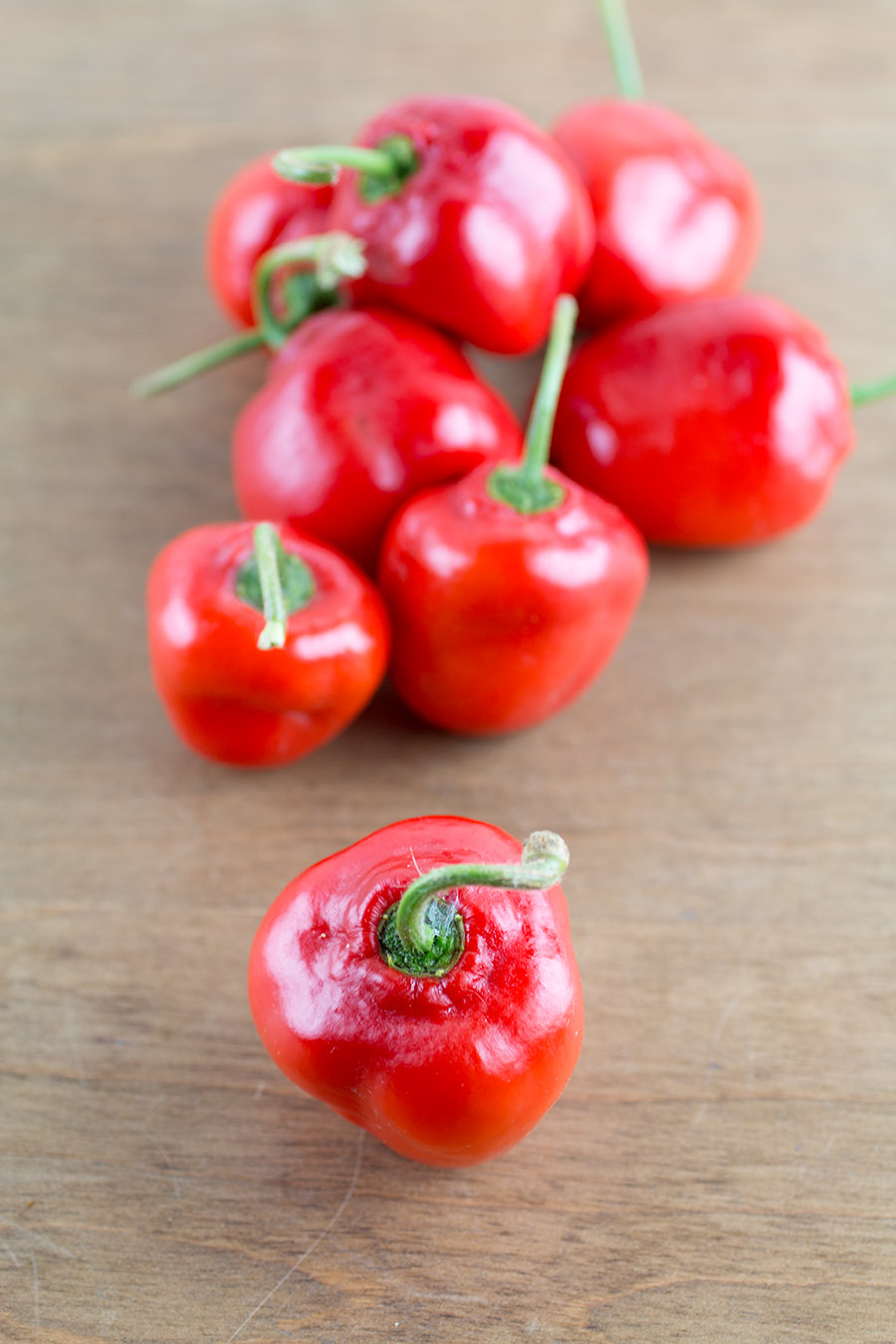 Rocoto Chili Peppers