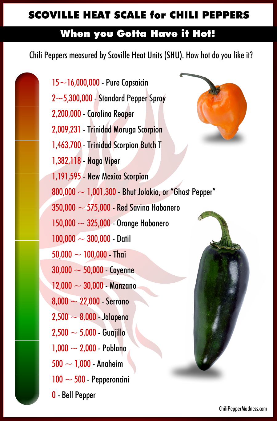 The Scoville Scale of Chili Peppers List from Hottest to Mildest