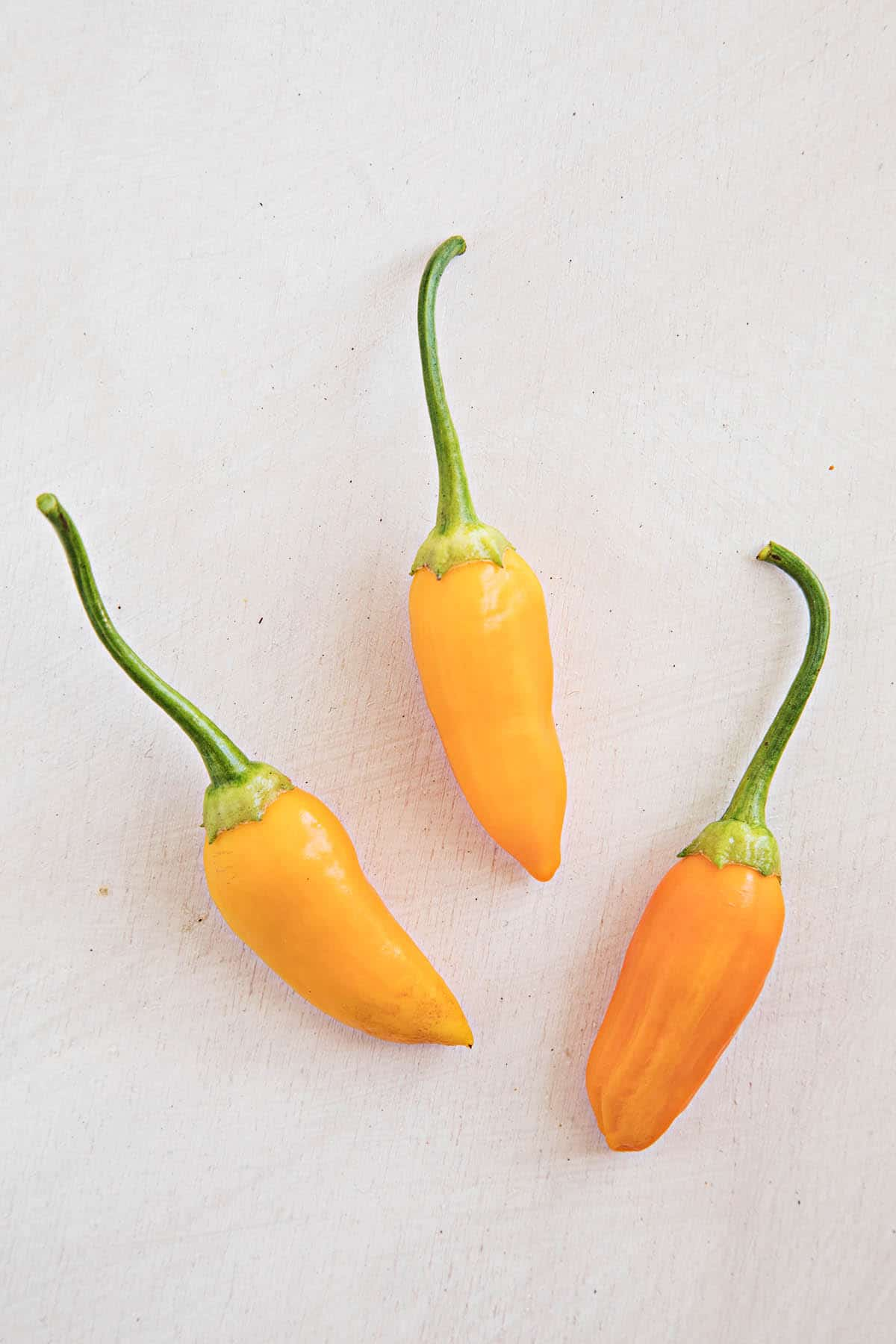 Aji Habanero Chili Peppers
