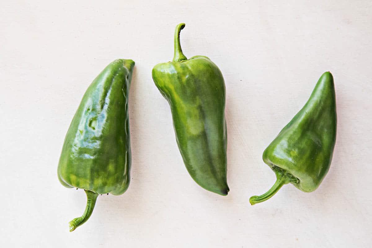 Super Shepherd Chili Peppers - large annual Italian sweet peppers