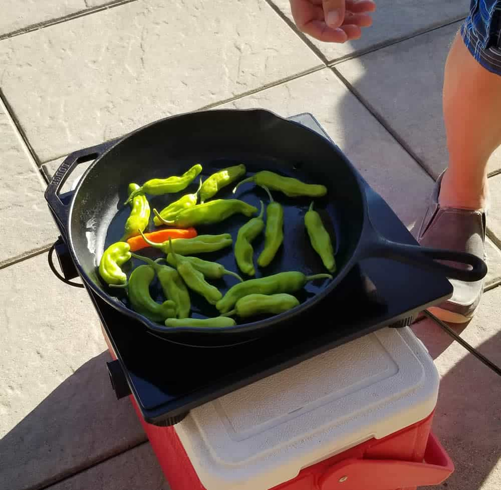 Blistering Shishito peppers by the pool in my induction cook top.