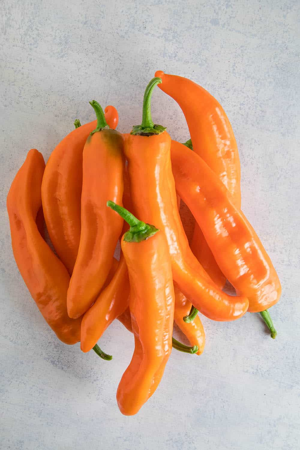 Corno di Toro Chili Peppers - Orange Variety