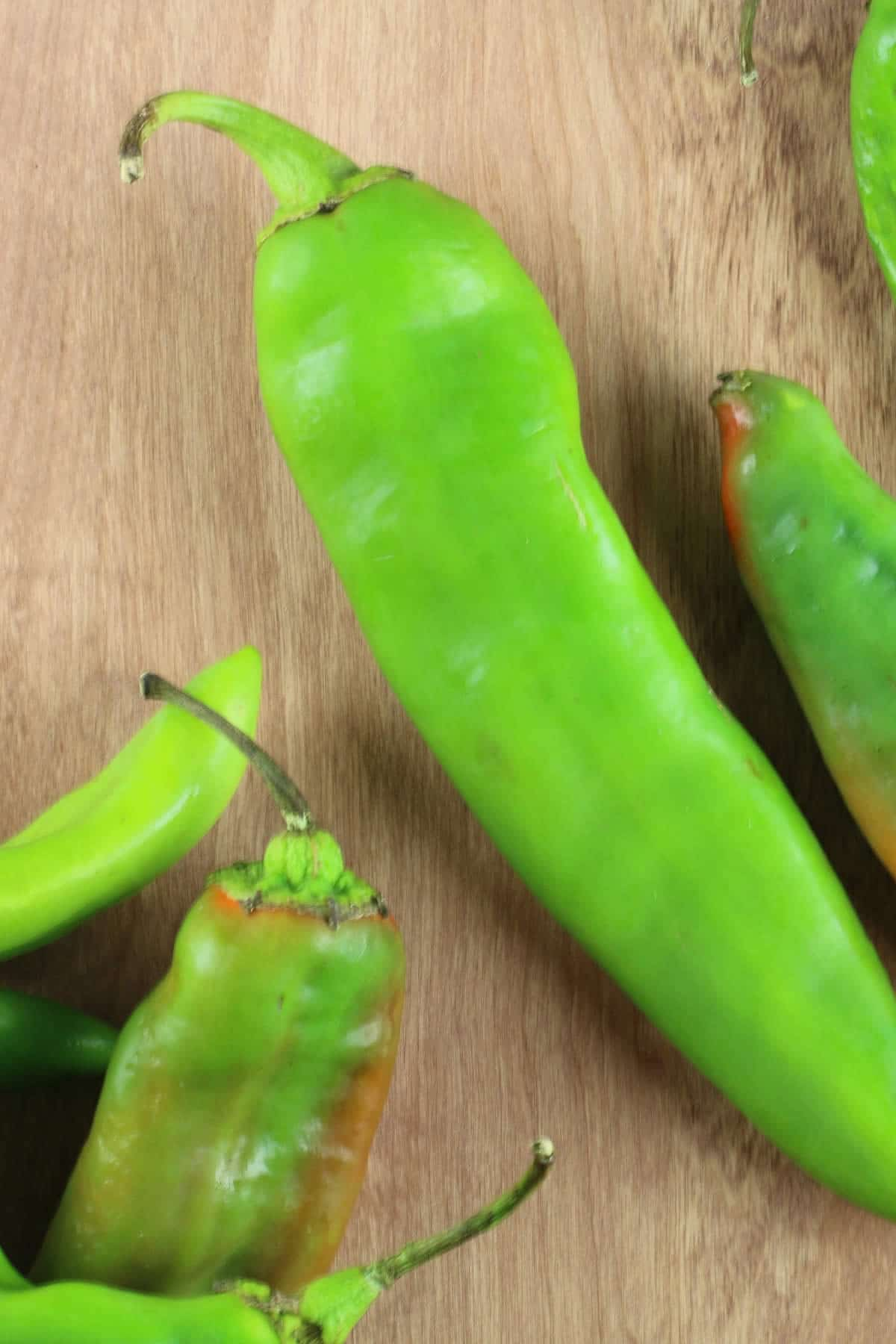 New Mexico 6-4 Heritage Chili Peppers