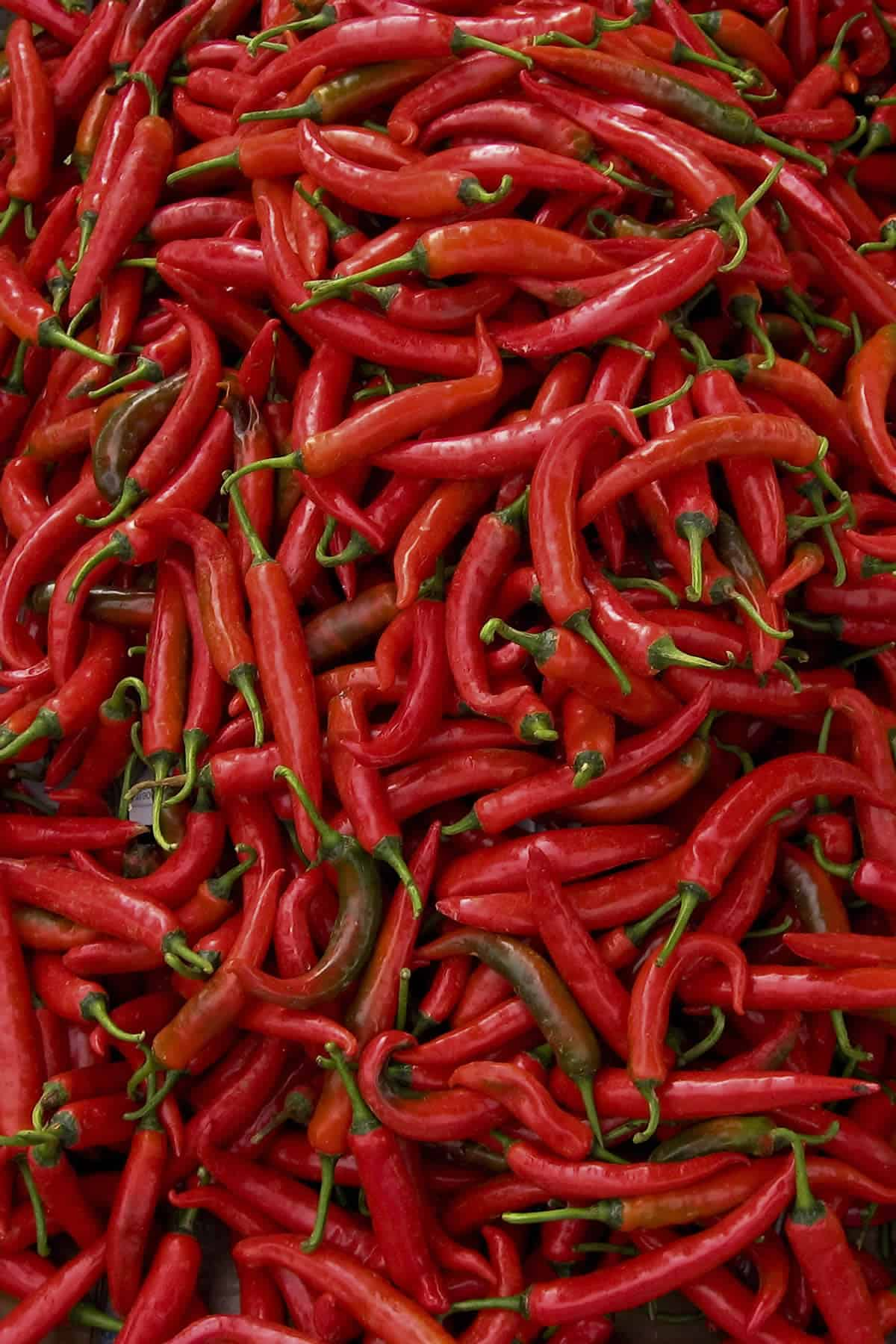 Thai Pepper: Many Types and Heat Levels