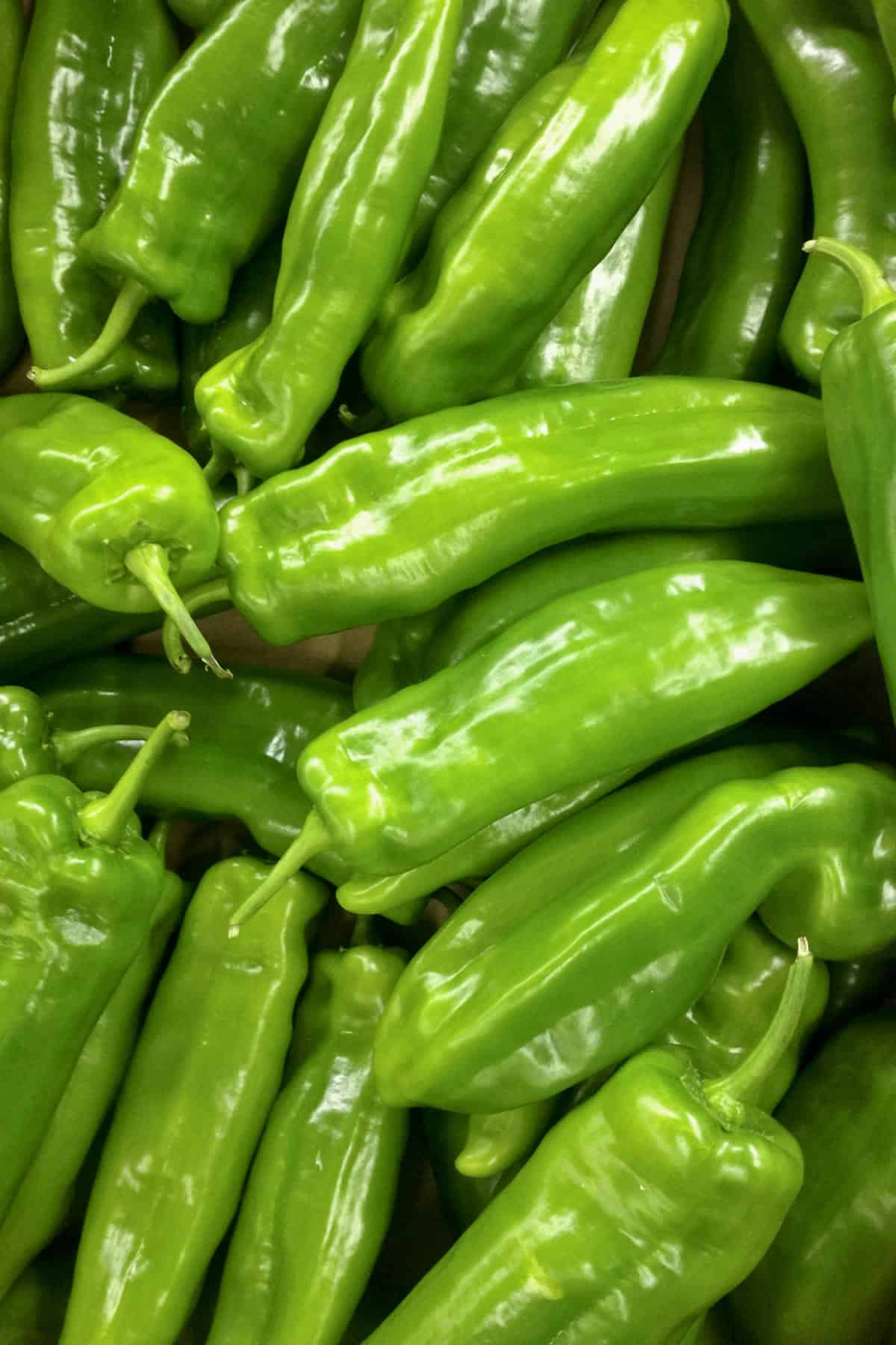 Cubanelle Pepper: All About Them