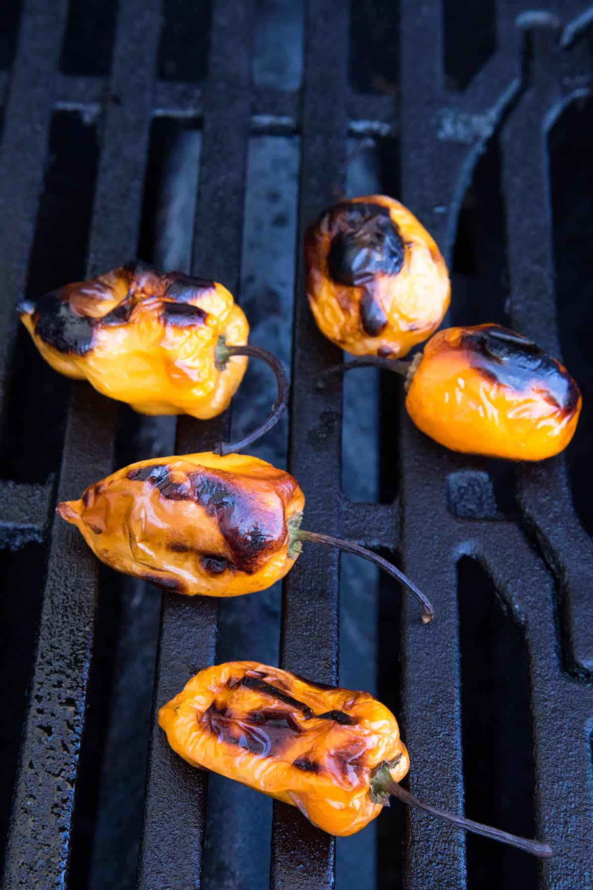 Charring habanero peppers on the grill