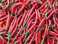 MEDIUM-HOT CHILI PEPPERS