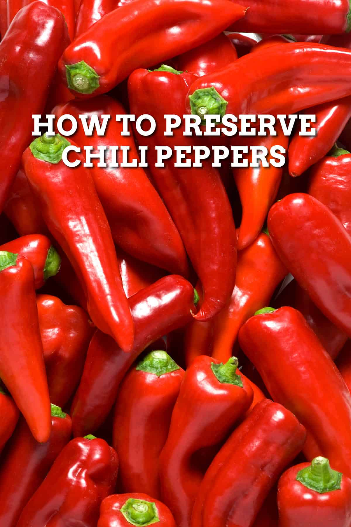 How to Preserve Chili Peppers