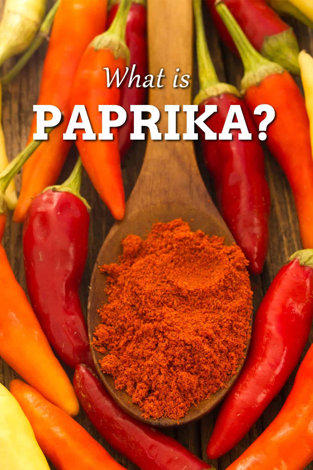 Paprika: a Popular Chili Powder
