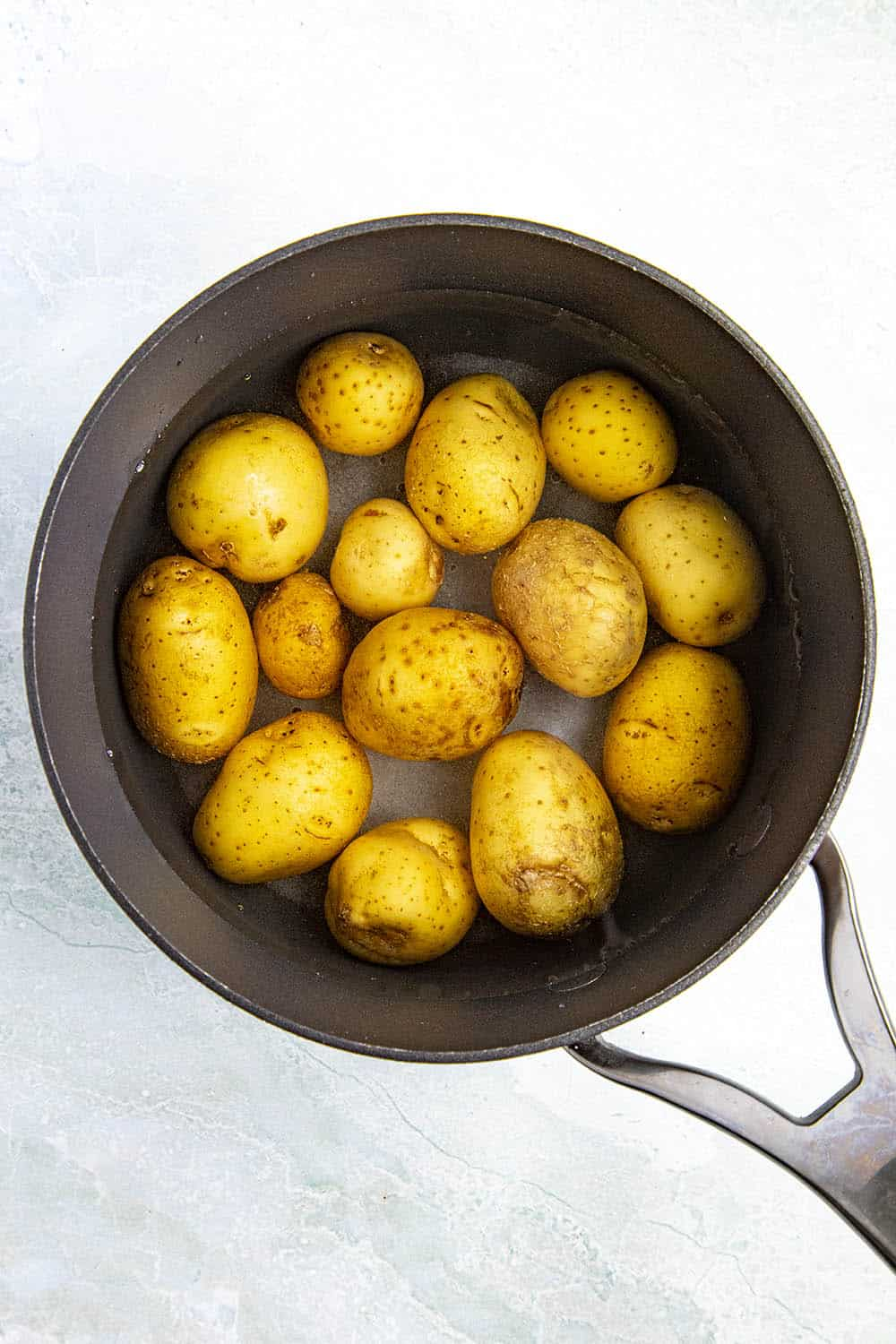 Small potatoes for making papas arrugadas in a pot with salted water