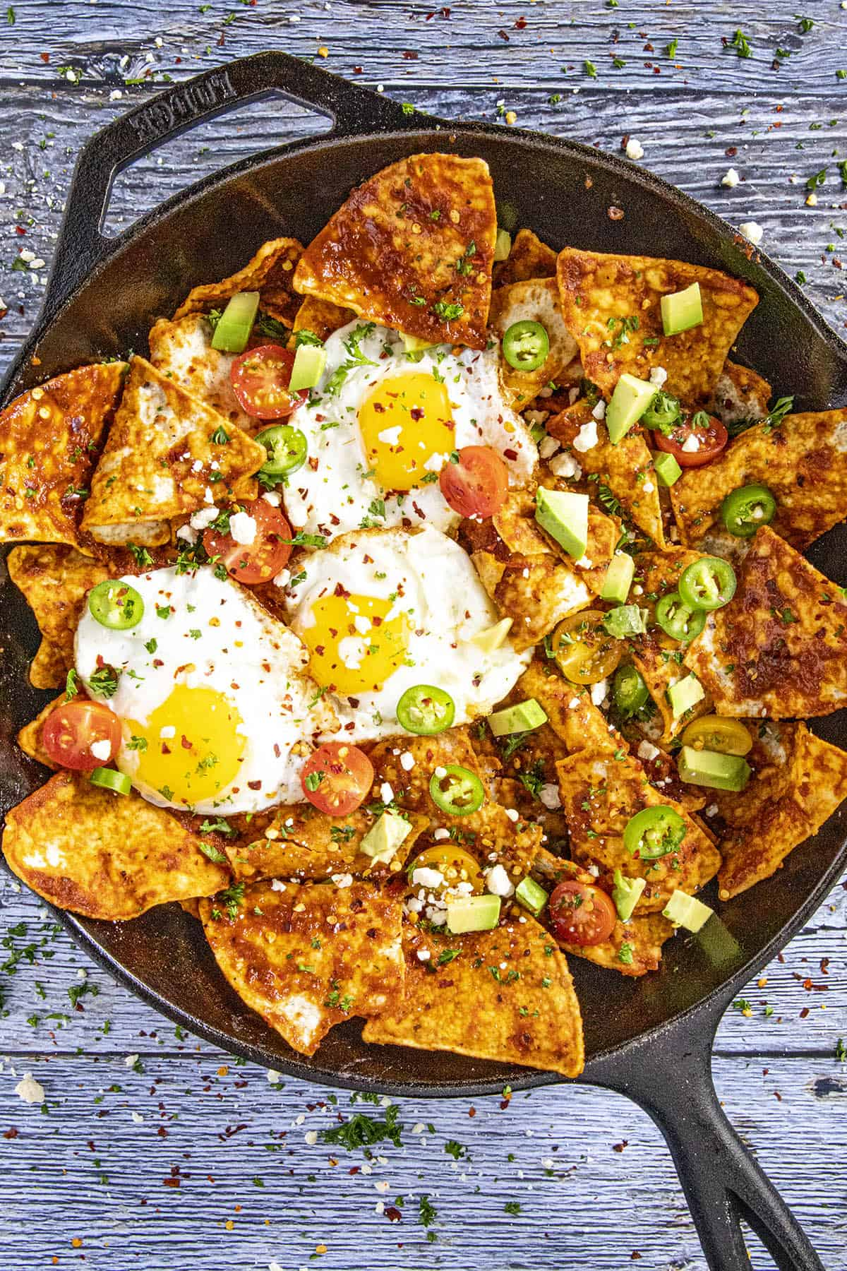 A pan full of Chilaquiles Rojos