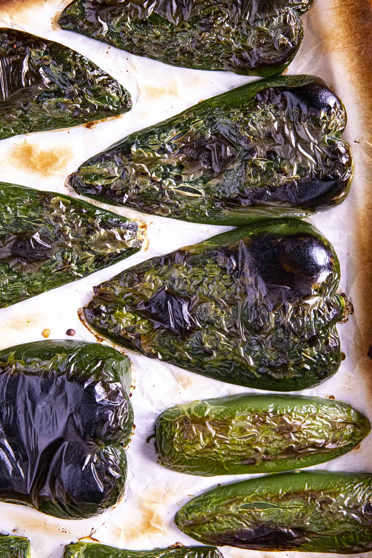 Roasted poblanos and jalapenos for making Spaghetti Verde