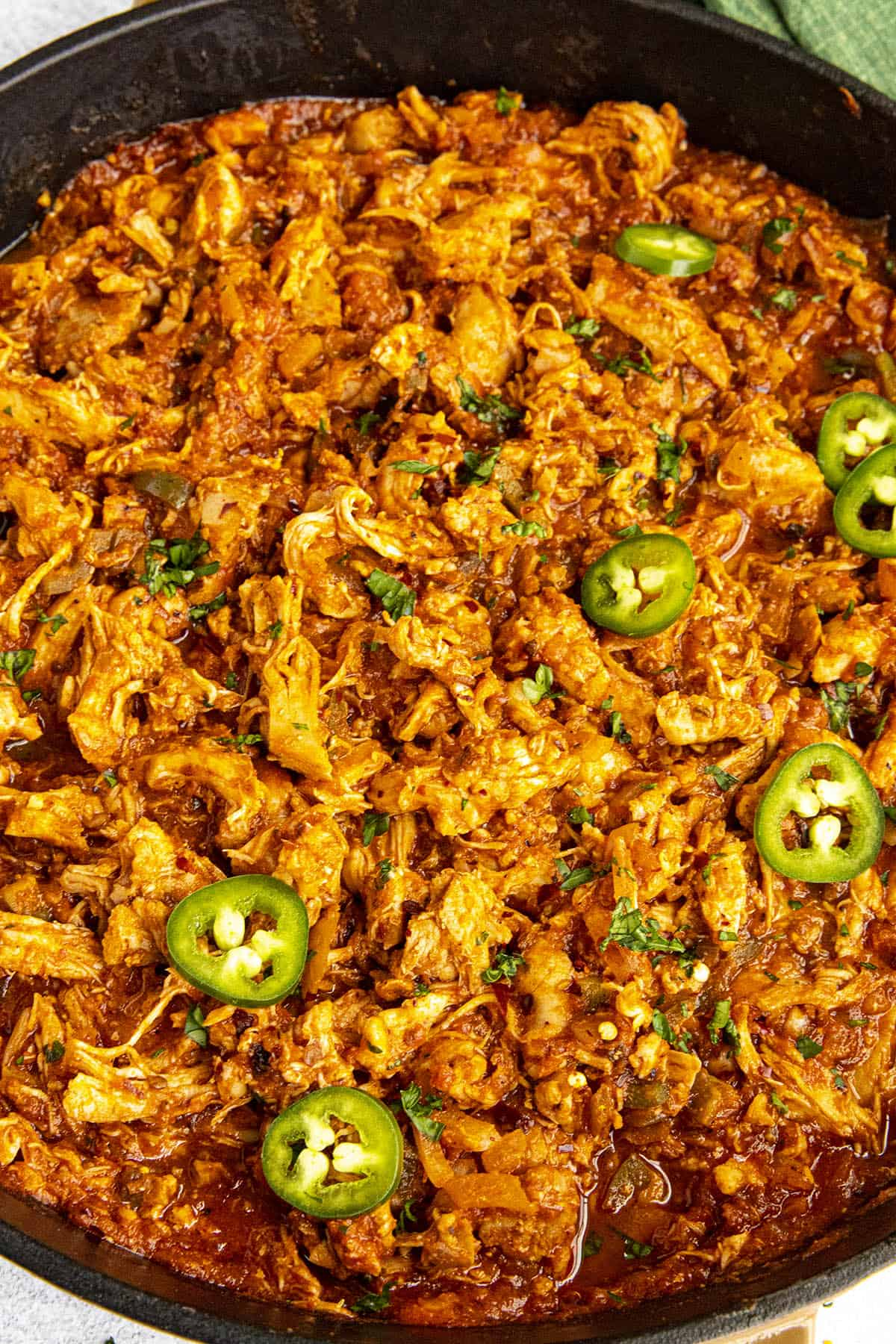 Chicken tinga garnished with sliced peppers