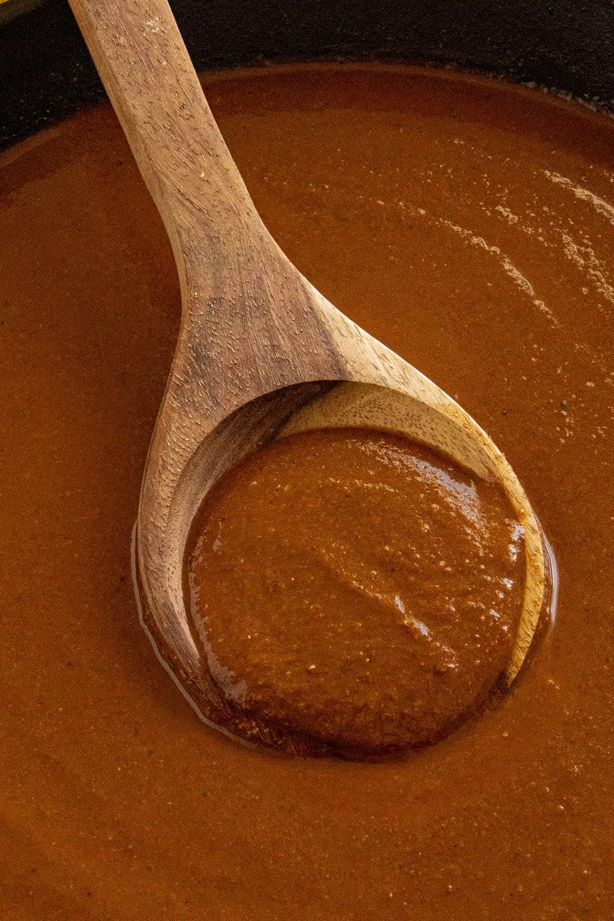 Mole Poblano sauce on a spoon