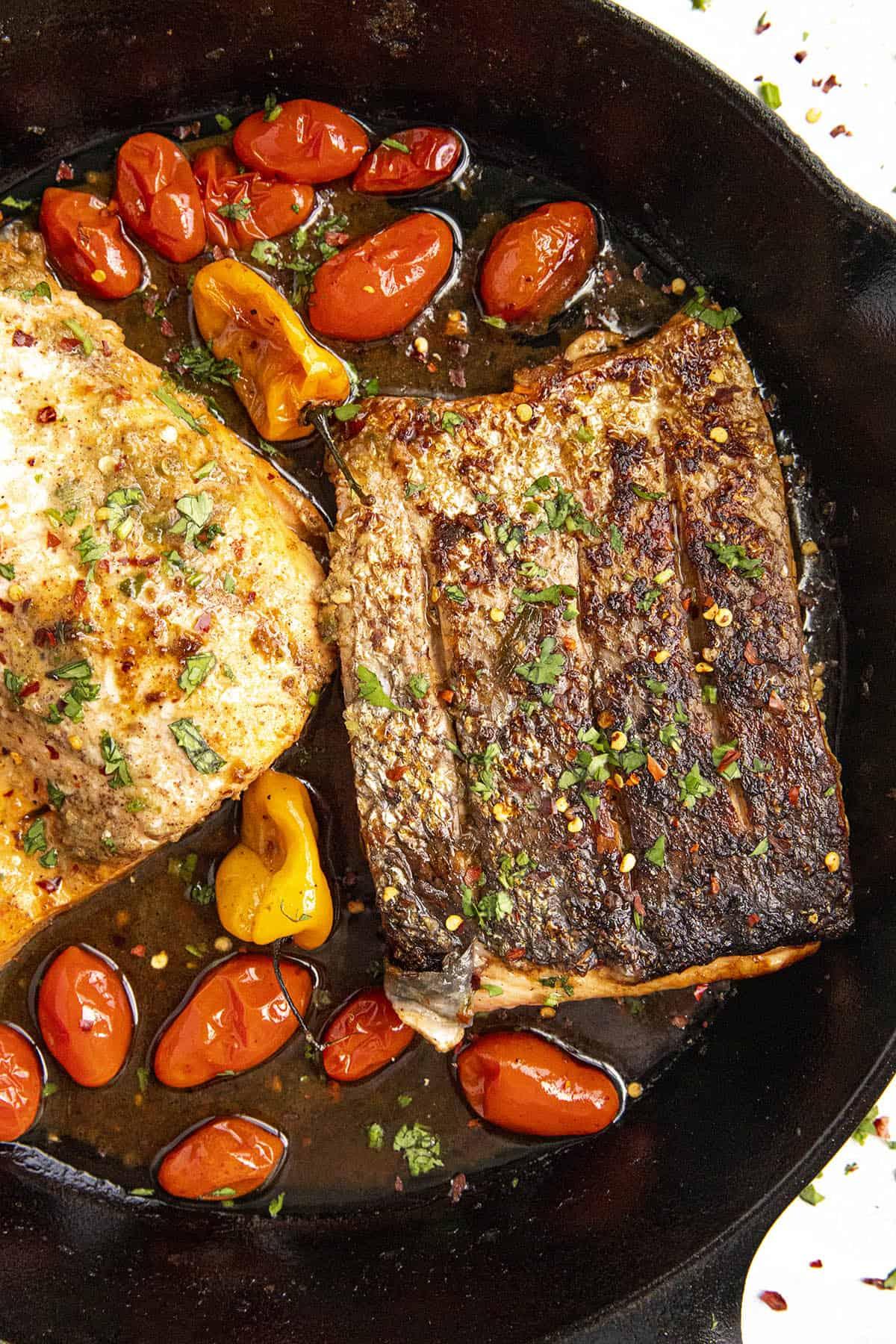 Jerk Salmon in a hot pan