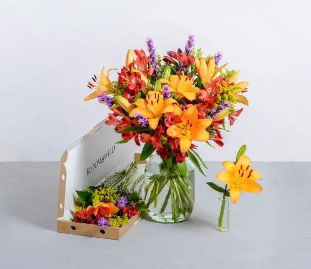 Happy days bloom and wild zara