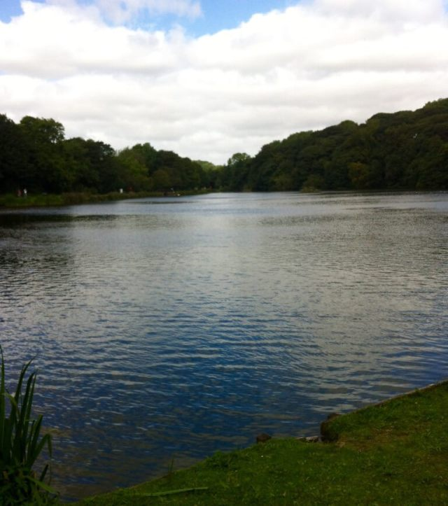 Yarrow valley country park review