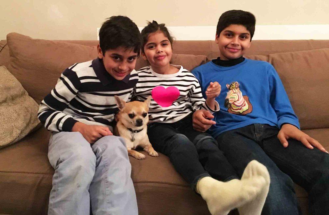 Dog family life Chilliwawa visiting cousins